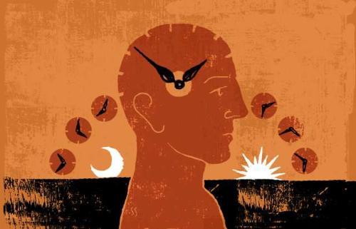 ritmo_circadiano_by_Stephen_Sedam_Los_Angeles_Times